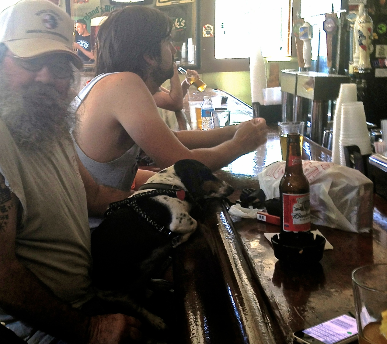 Nothing unusual in Parasol's Bar, known for its Po Boy sandwiches, fully dressed.